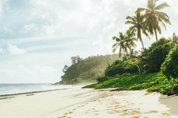 private-ocean-islands-seychelles-beach-wind